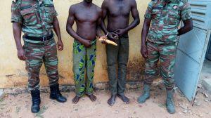 kandi-trafiquants-ivoire